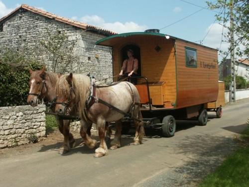 cheval de trait roulotte