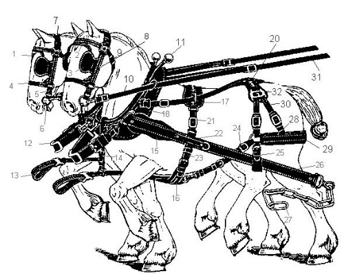 Harnais 20am C3 A9ricains as well Tractor Trailer Fifth Diagrams further David Brown 990 Wiring Diagram further Huskee Lt4200 Lawn Mower Parts moreover Easy Cartoon Bird Drawings In Pencil. on parts of a horse harness diagram