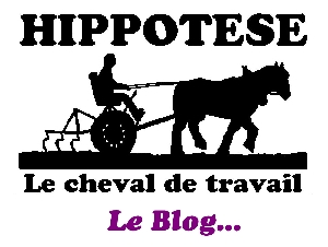 Vers le blog d'Hippotese...