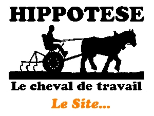 Vers le site d'Hippotese...